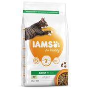 Obrázek Iams Cat Adult Lamb 2Kg